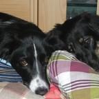 Sheila & Luna