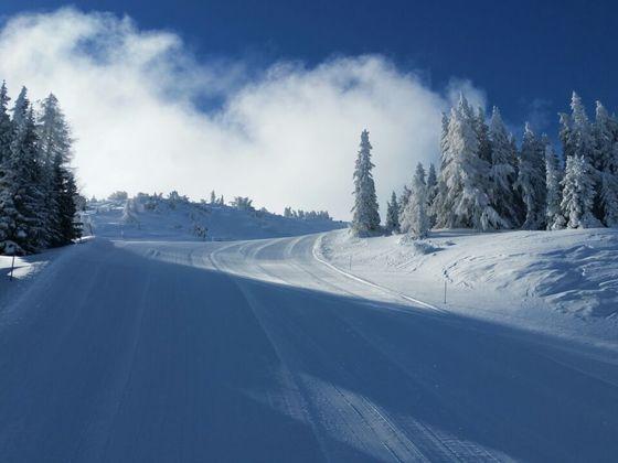 Winterimpressionen  Steinach am Brenner